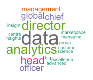 Terms used in the title of senior data professionals