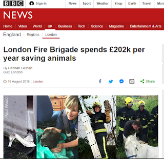 New article on the BBC about the campaign