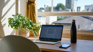 Homeworking: Balancing Corporate Control and Employee Privacy (I)